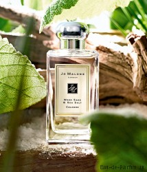 Wood Sage & Sea Salt Cologne (JM) 100ml унисекс