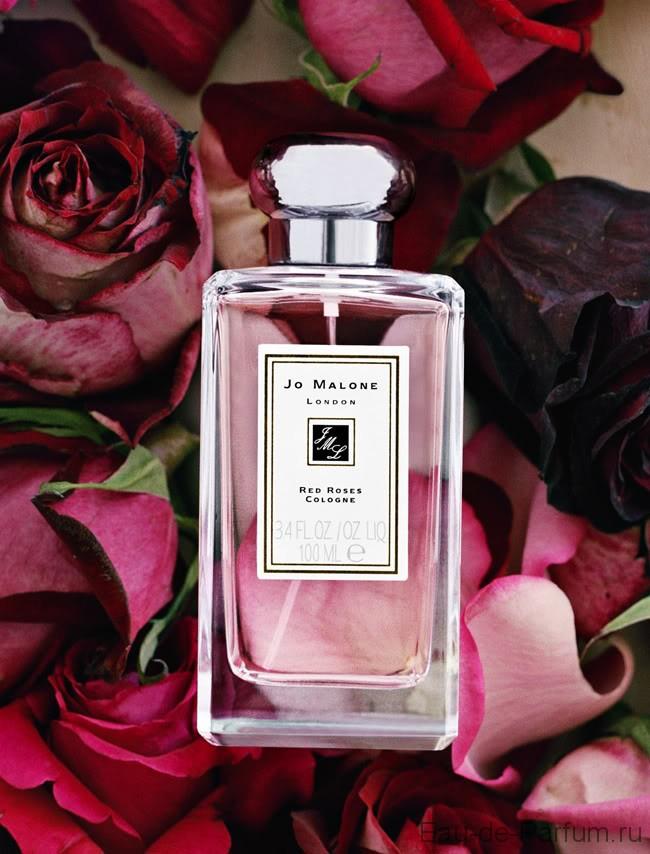 личности, чей ароматы с запахом розы фото процесс