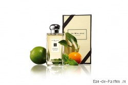Lime Basil & Mandarin Cologne (JM) 100ml унисекс