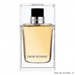 "Dior Homme ""Christian Dior"" MEN 100ml (ТЕСТЕР Made in France)"